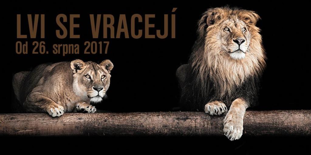 zoo lvi